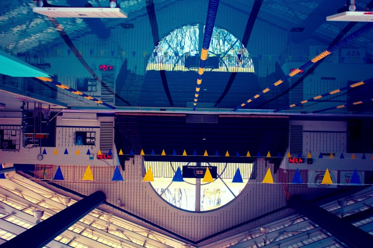 Art pool